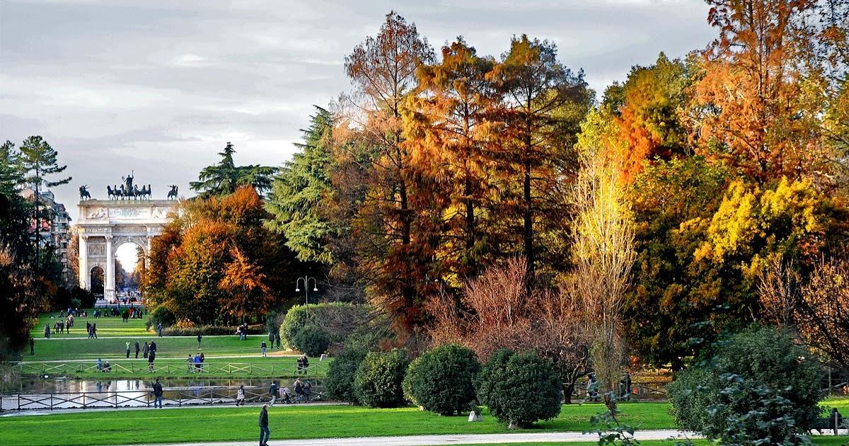 Foliage Milano